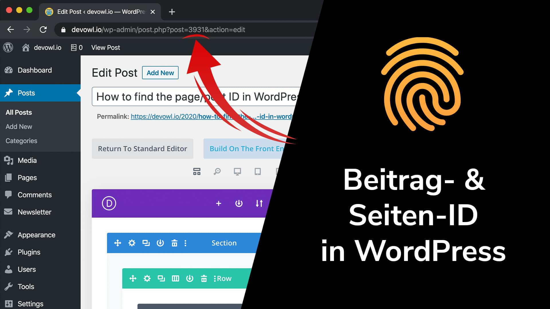 Beitrags-ID und Seiten-ID in WordPress
