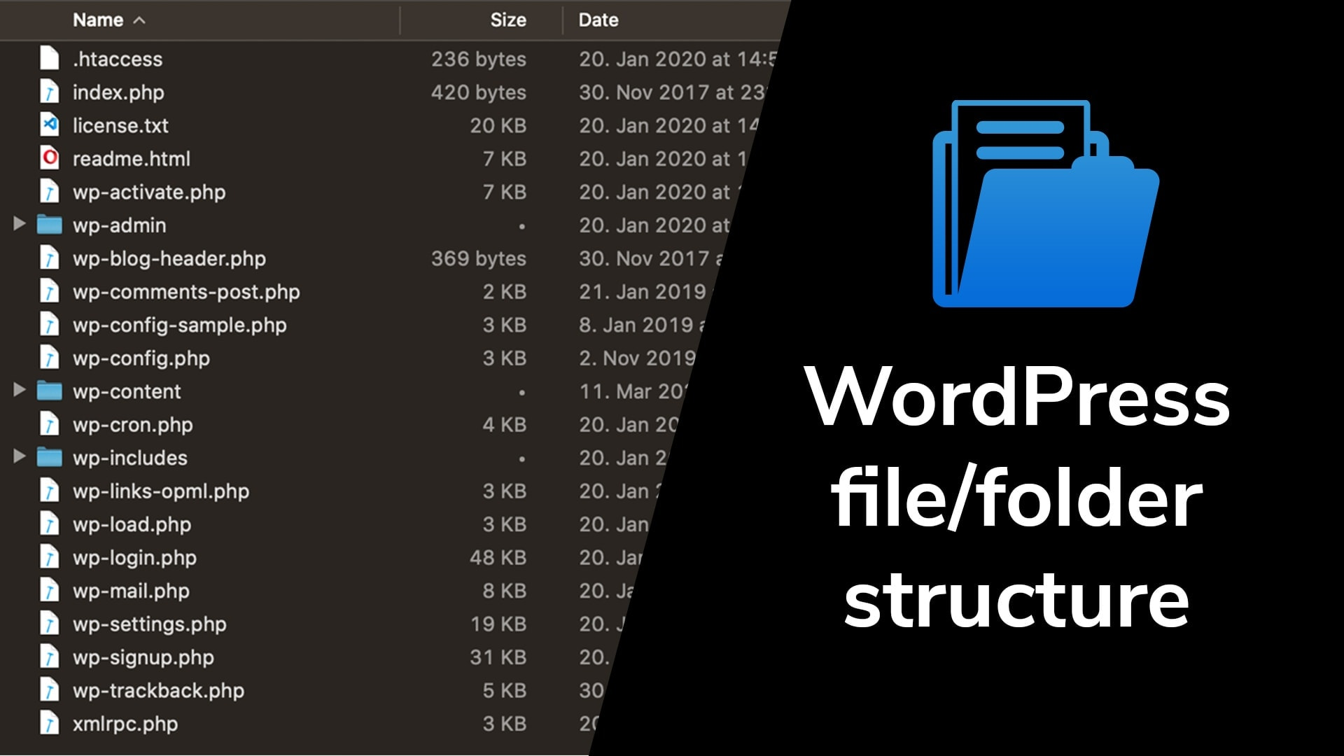WordPress folder structure: wp-content/ folder structure