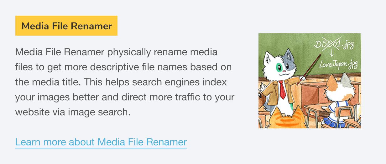 Media File Renamer: Media File Renamer renomeia fisicamente os arquivos de mídia para obter nomes de arquivo mais descritivos com base no título da mídia.  Isso ajuda os mecanismos de pesquisa a indexar melhor suas imagens e direcionar mais tráfego para o seu site por meio da pesquisa de imagens.